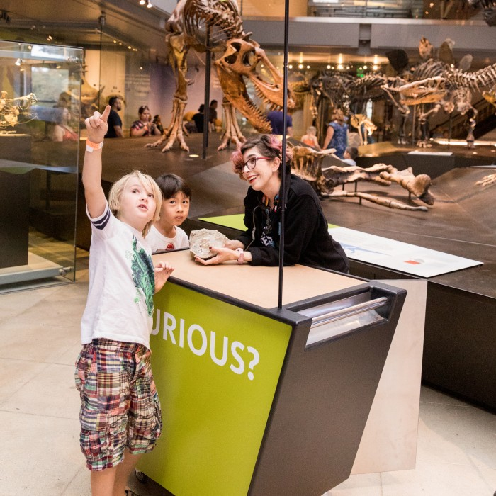 gallery interpreter at curiosity cart talking to a child in Dinosaur Hall