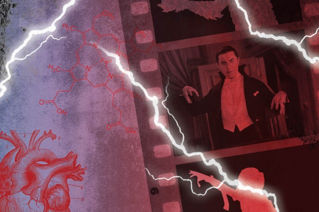 Image of Dracula from film within film strip