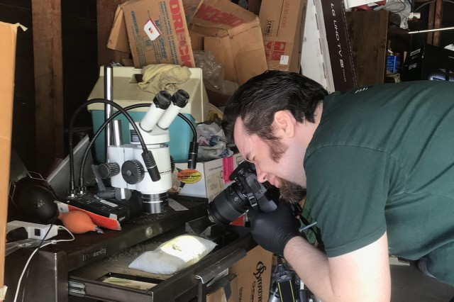 Preparator James Preston working on fossils from home.