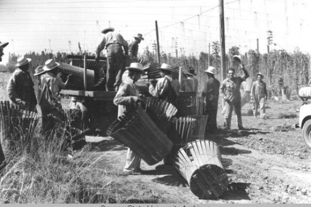 Image of braceros hauling baskets into trucks