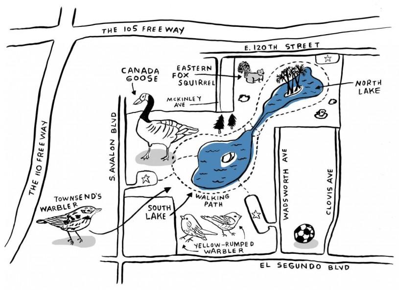 "Map Illustration of Earvin ""Magic"" Johnson Park"