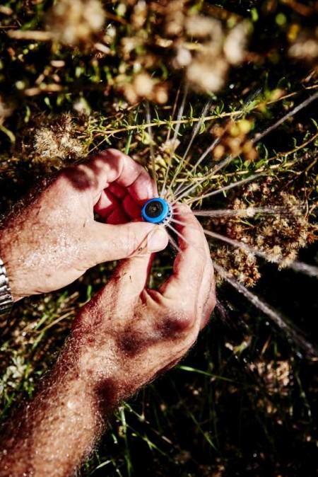 Image of hands holding a sprinkler
