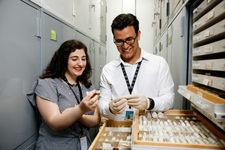 Two interns, one woman and one man show specimens in the malacology collections room